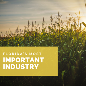 Florida's Most Important Industry